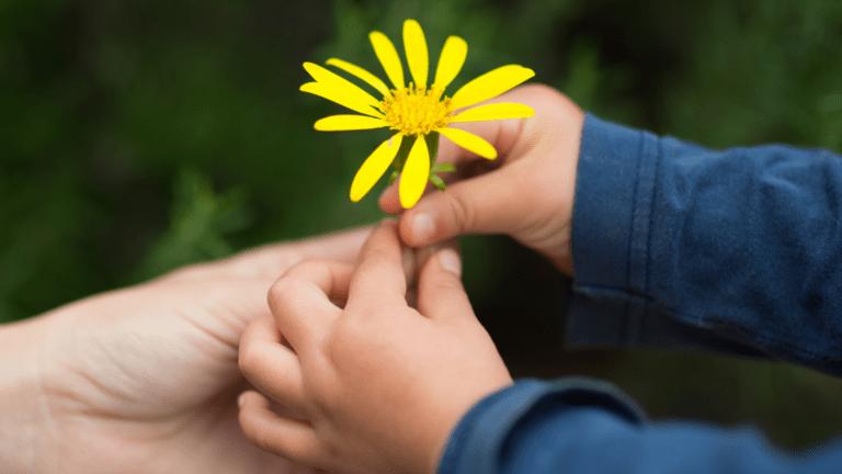 Lapsi antaa kukan äidilleen
