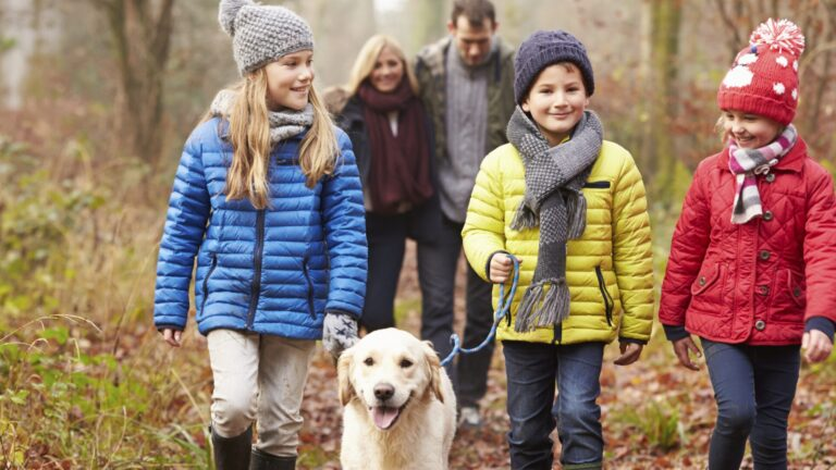 perhe kävelee syksyisessä metsässä