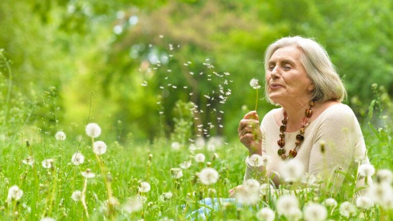 Nainen puhaltaa niityllä voikukan siemeniä