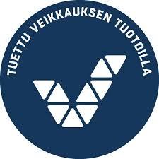 Stean logo