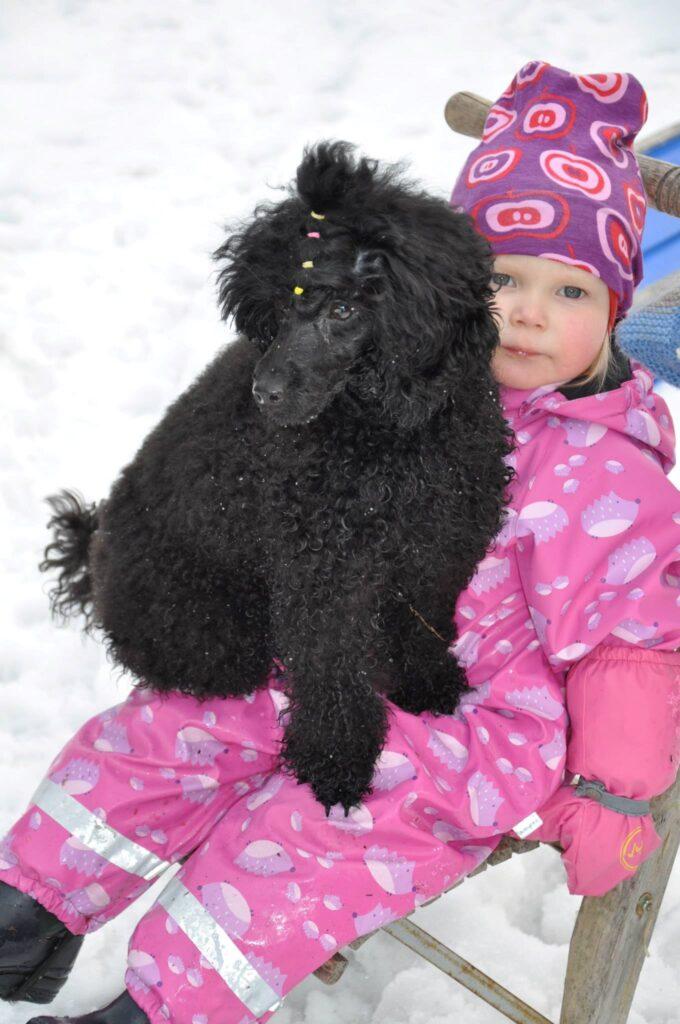 musta villakoira vaaleapunahaalarisen lapsen sylissä. TAlvi