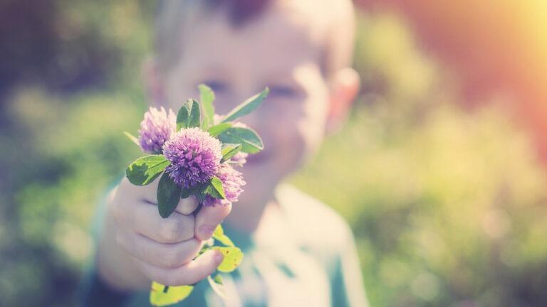 poika ojentaa kukkaa kameraa päin